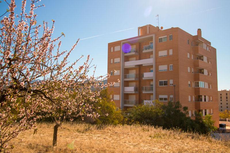 jardin de jijona asa promoción inmobiliaria