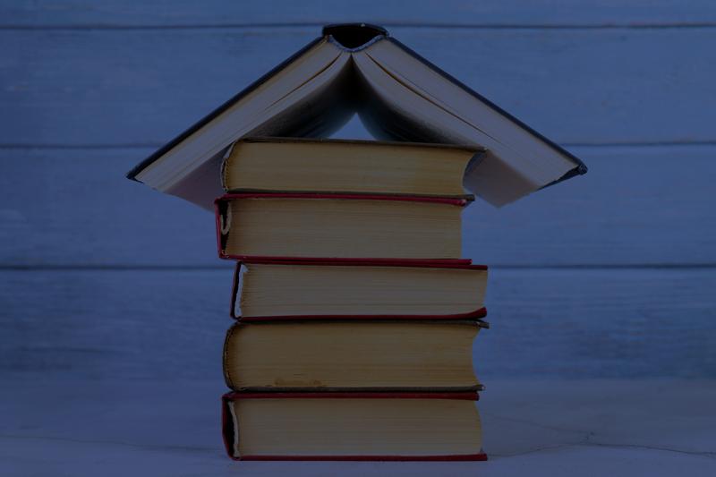 dia del libro recomendaciones